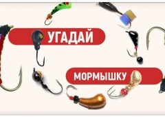 Тест рыбака на знание мормышек