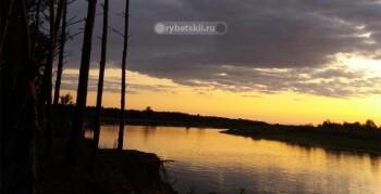 Отчёт о ловле сома и щуки донкой на реке Припять