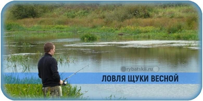 Как поймать щуку весной и подготовиться к рыбалке