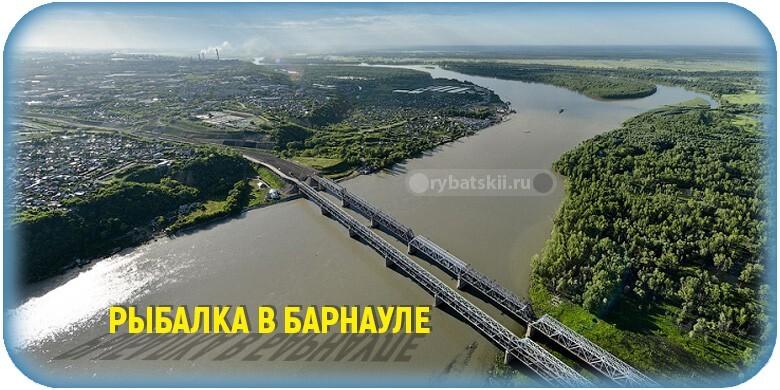 Где порыбачить в Барнауле в лучших рыбных местах для рыбалки