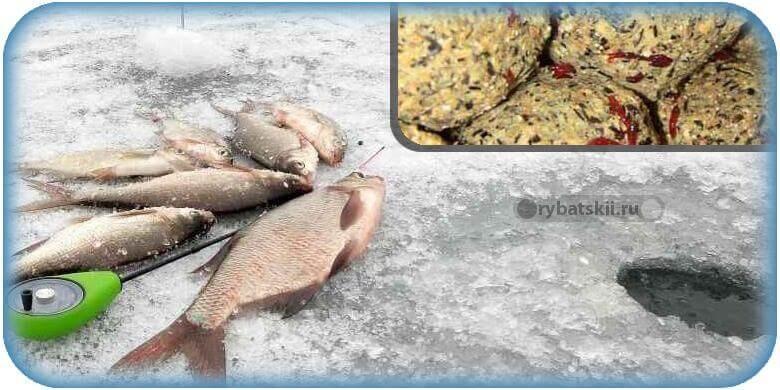 Прикормка на леща и подлещика зимой