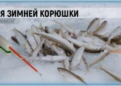 Подлёдный лов корюшки и оснастка зимней удочки для рыбалки