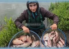 Фидерная рыбалка на леща и подготовка снасти