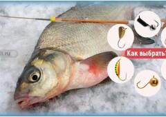 Как выбрать мормышки для зимней рыбалки на леща