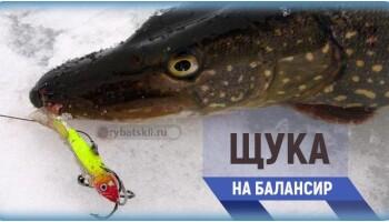 Зимняя рыбалка на щуку с балансиром и подготовка снасти