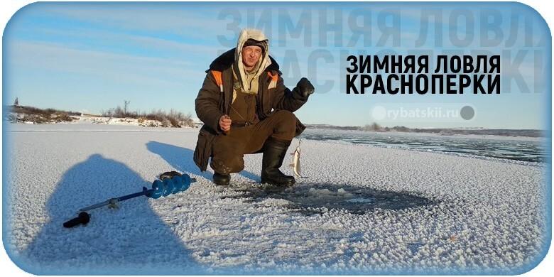 Зимняя ловля краснопёрки и подбор рабочих мормышек