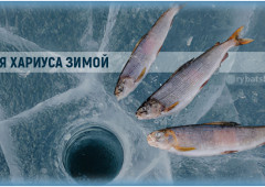 Зимняя рыбалка на хариуса со льда и подготовка снастей