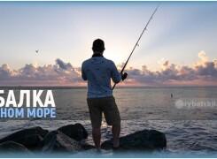 На что ловят рыбу на Черном море и на какие снасти