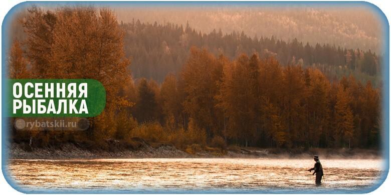 Особенности осенней рыбалки и секреты ловли рыбы осенью