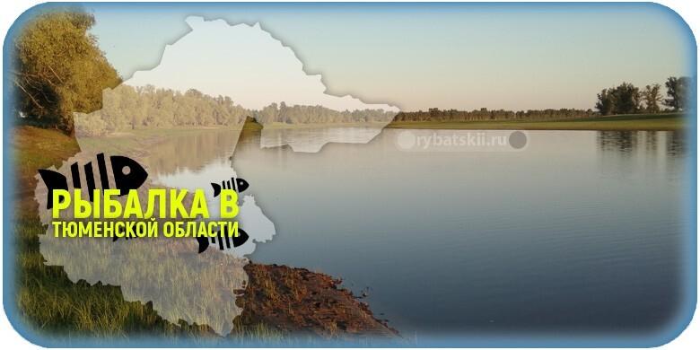 Где клюёт рыба Тюменской области и какие есть рыбные места