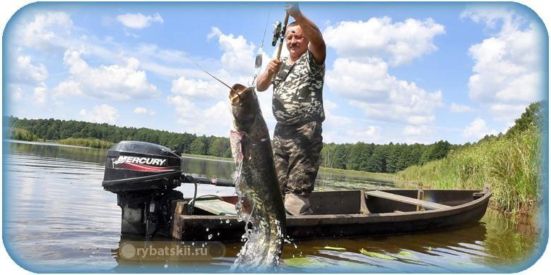 Когда будет разрешена рыбалка с лодки в 2020 году