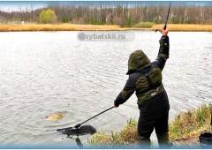 Ловля сазана на фидер: советы бывалых рыбаков
