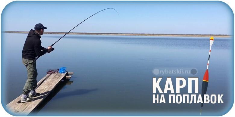 Ловля карпа на поплавочную удочку и подготовка тактики рыбалки