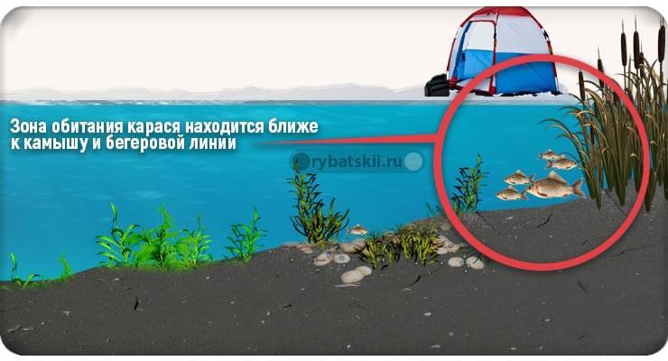 Место поиска рыбы