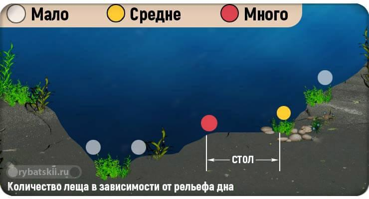 Рельеф дна водоёма в графике