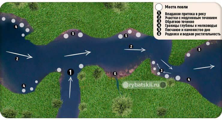 Рельеф реки и тропы налима