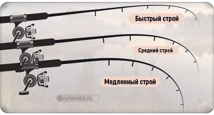 Три вида строя