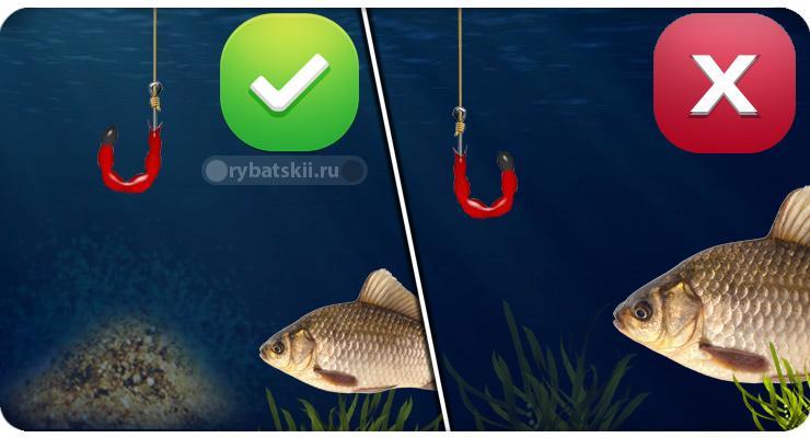 Рыбалка с прикормкой и без