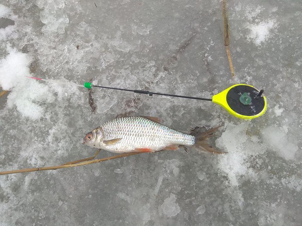 Фото с рыбалки на Истринском водохранилище зимой