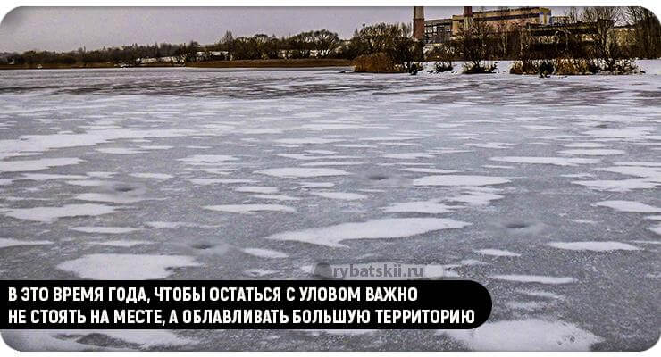 Лунки во льду на озере