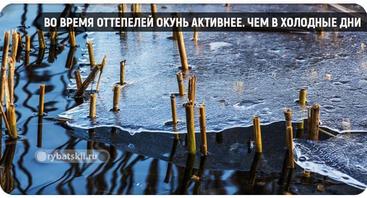 Оттепель и таяние льда