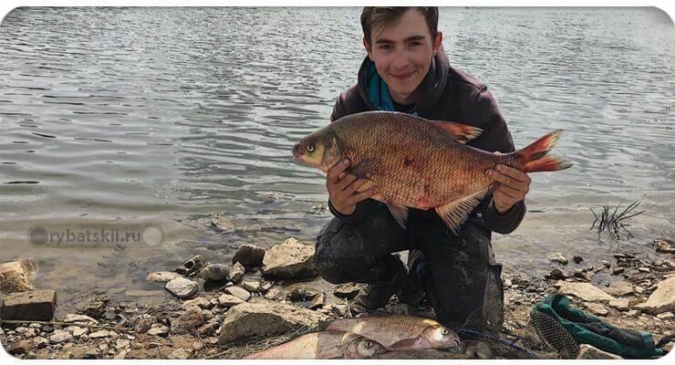 Рыбалка на реке с фидером