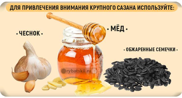 Чеснок, мёд и семечка