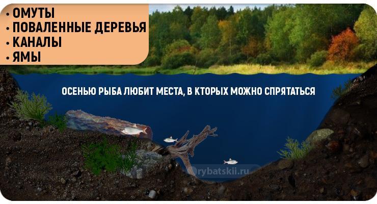 Места для осенней рыбалки