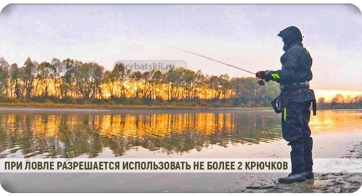 Сезон рыбалки в Подмосковье в 2020 году