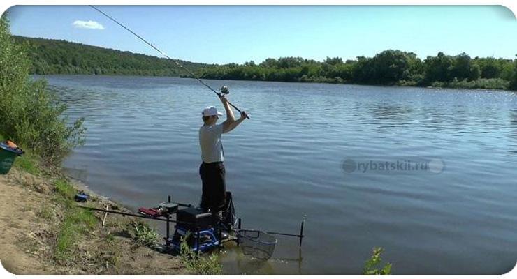 Рыбалка на фидер для начинающих от А до Я