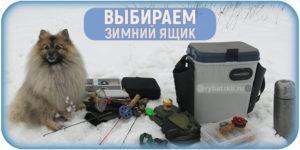 Нюансы выбора зимнего рыболовного ящика