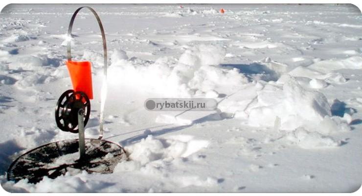 Ловля форели зимой на жерлицы и поставушки