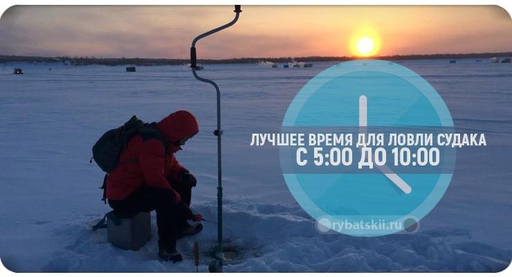Зимняя рыбалка на судака со льда в разные месяцы
