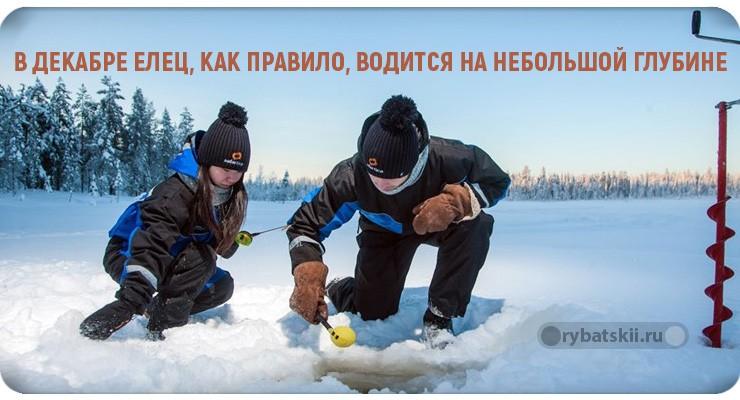 Зимняя ловля ельца на мормышку и подготовка прикормки