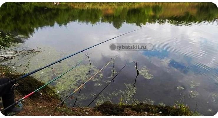 Рыбалка на карася весной с поплавочной удочкой