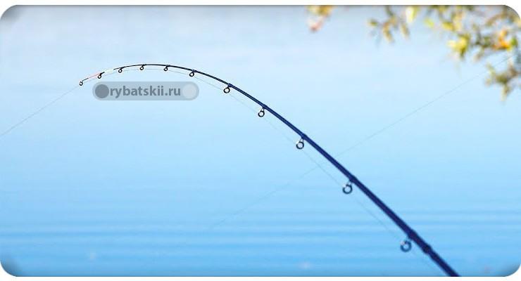 Как увидеть поклёвку на фидере и когда подсекать рыбу
