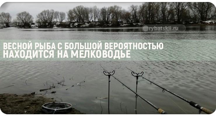 Как рыбачить фидером на озере и какую снасть использовать