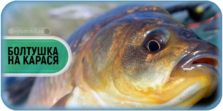 Заметки рыбака: ловля рыбы на тесто. Способы приготовления