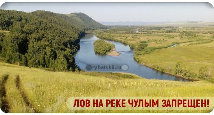 Запрет лова на реке Чулым