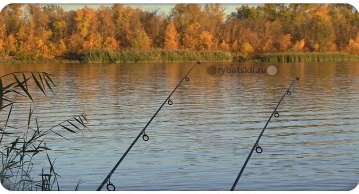 Осенняя рыбалка в Тюменской области