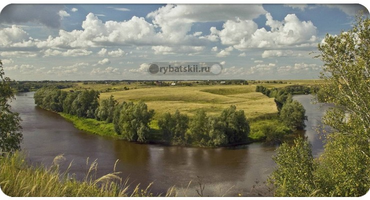 Река Омь