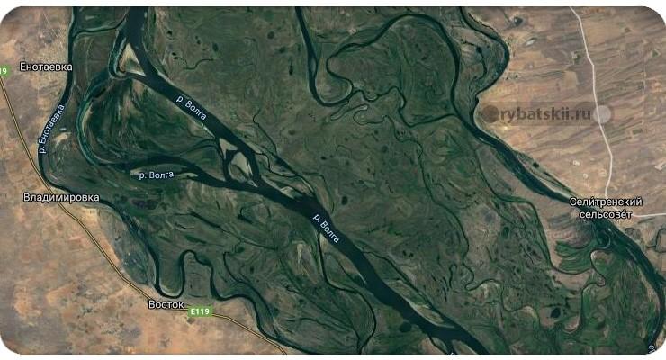 Пойма реки Волга