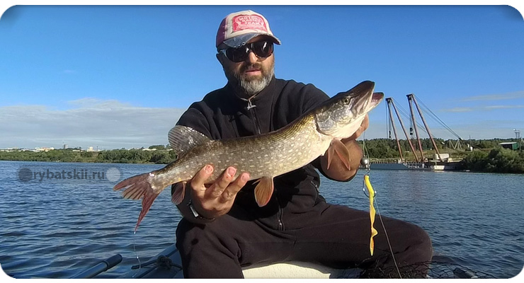 Улов на рыбалке