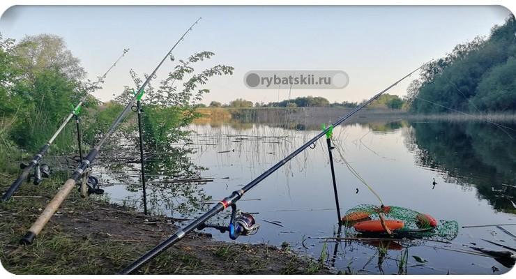 Разные факторы на рыбалке