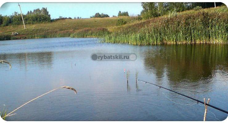 Рыбалка осенью на поплавок